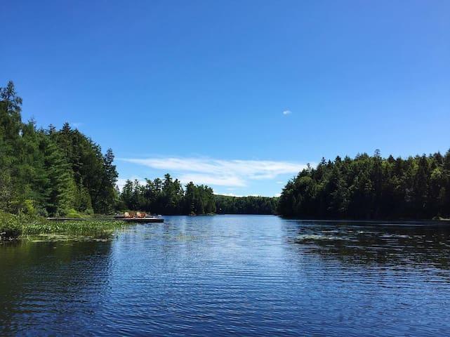 Secluded Lakeside Hideaway in Haliburton
