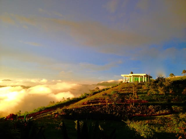 Luxury in Sri Lanka's Tea Hills - The Villa