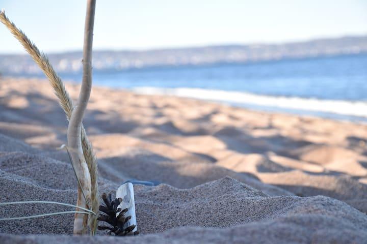 Beachside Bungalow