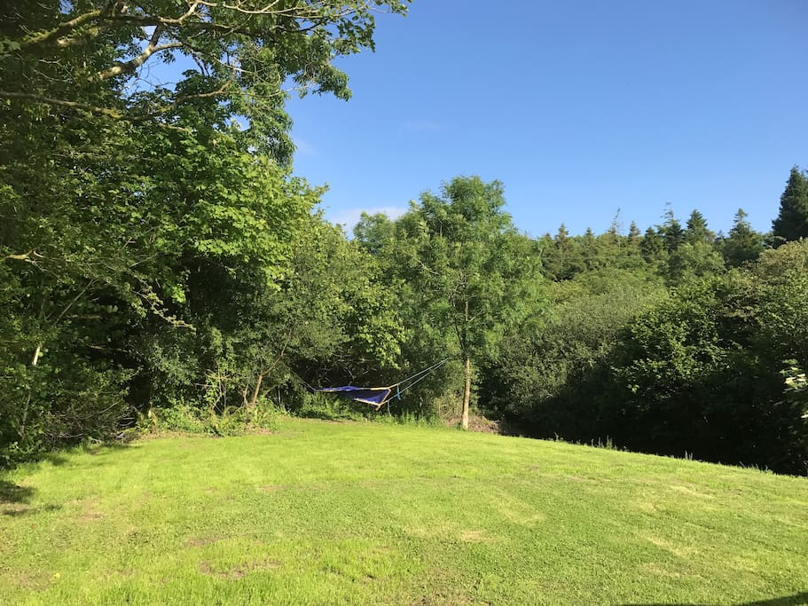 Polly is a Super size camping pitch with hammock. Beautiful views and sound of river.