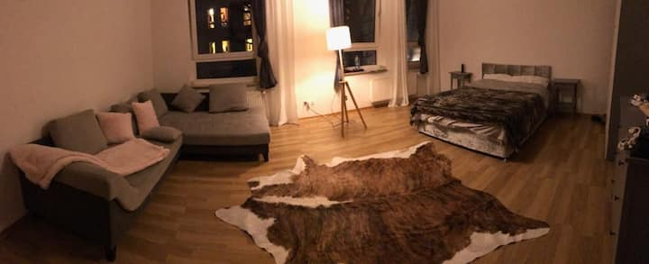 central sweet room just 5min from train station HB