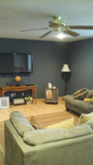 Family room tv private for renter