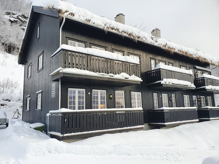Røldal apartment with Mountain view
