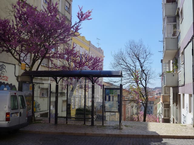 Bus stop on top of the stair case/street downhill. Just opposite our place