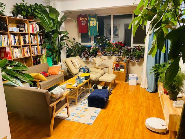 与房东合住,120寸专业观影Xbox游戏机 懒人沙发可看书喝茶全屋智能,临近孝妇河湿地公园和体育中心