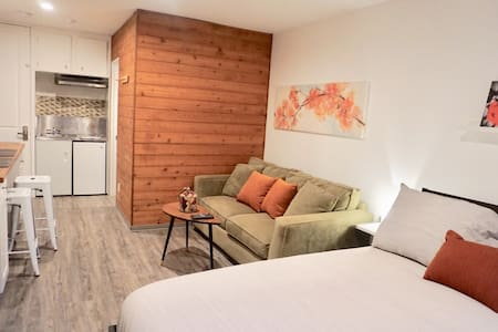 Modern, just renovated Studio with Whistler flair