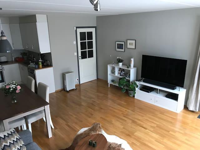 Modern, spacious apartment | 15 mins to downtown