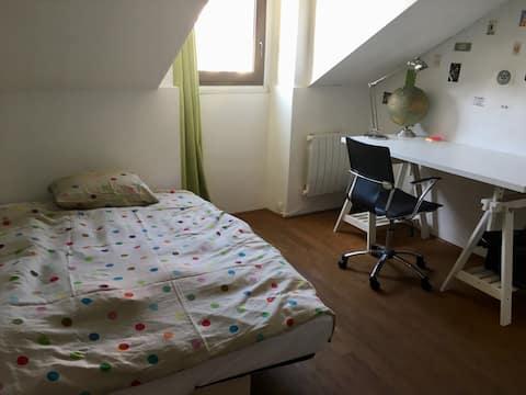 Chambre appart atypique en hypercentre de Nantes