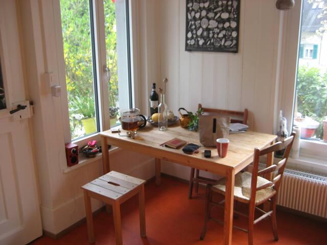 Lust auf Sommer in Zürich? Bijoux zur Untermiete - Zürich - Apartment