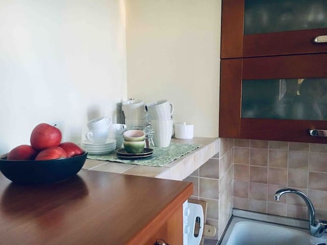HOME APARTMENT just few steps to Mariinsky Park