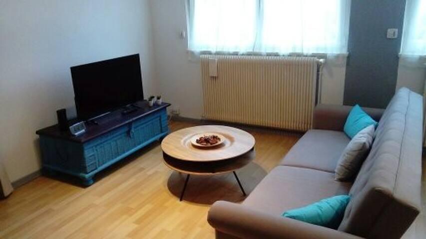 Appartement confortable aux portes  de Strasbourg