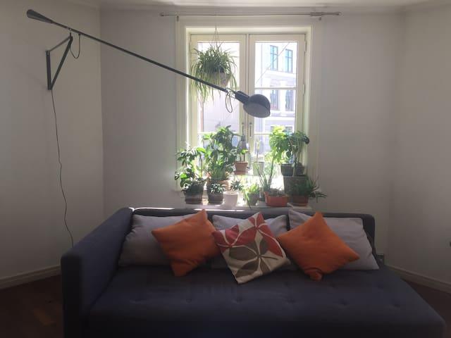 Spacious room in Grunnerløkka! Long term preferred