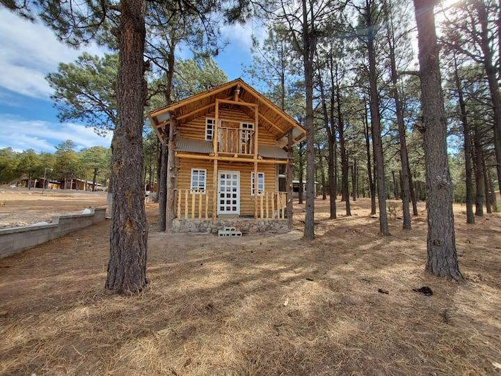 Cabaña #8 Sehuereachi