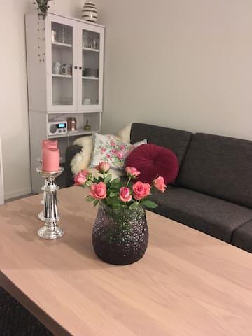 Ny leilighet, sentralt og med landlige omgivelser
