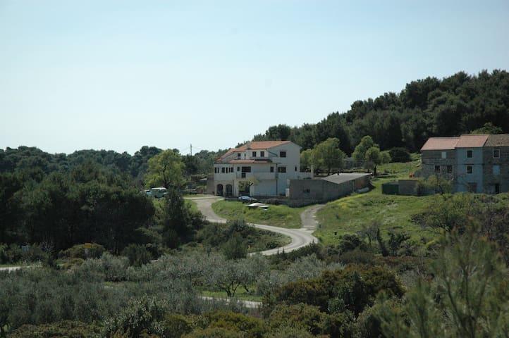 Kordić Studio Apartment with Balcony