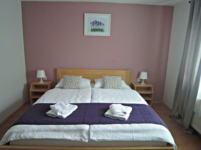 House Leonarda--room for five - Grabovac - House