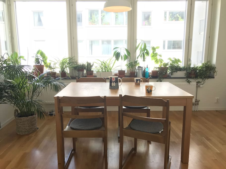 The kitchen table and all the plants are ready to welcome you for your breakfast or snack.