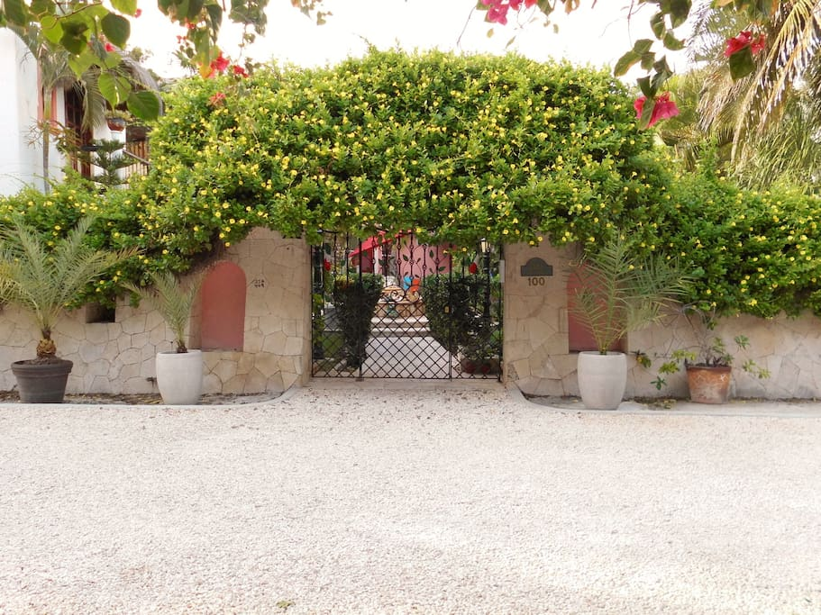 Entrance to Casa Gatos