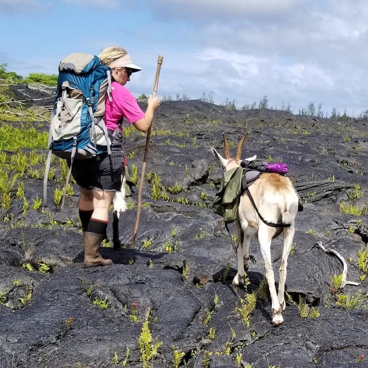 Goats Make Great Hiking Companions!