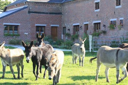 Les Mout'ânes - Saint-Hilaire-sur-Helpe - Bed & Breakfast