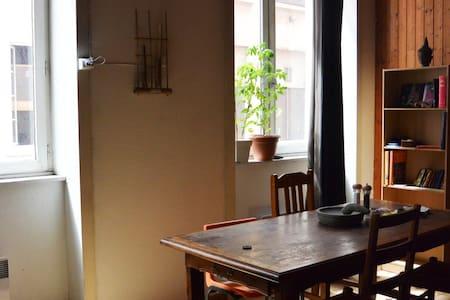 appartement lumineux avec mezzanine - Lyon - Appartement