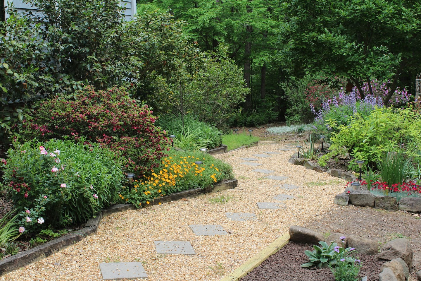 Garden path to entrance showing Spring flowers