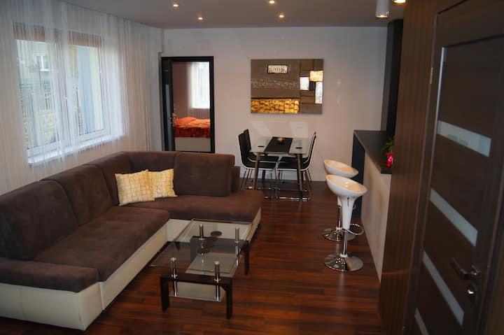 Apartamenty Kamienna (Brązowy)