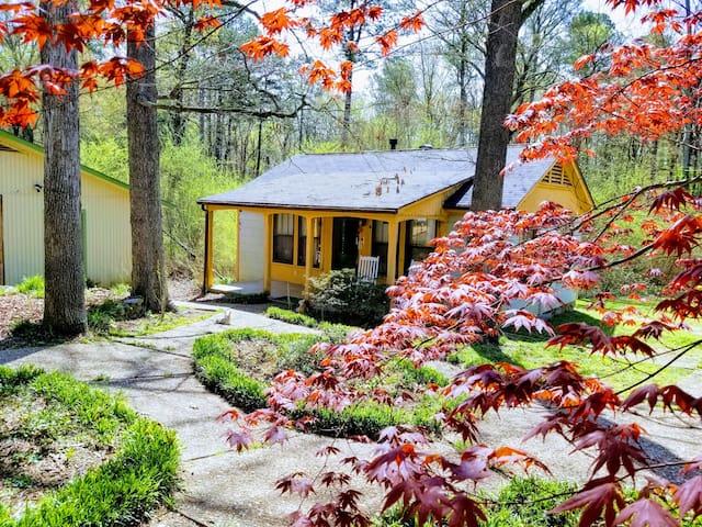 Cottage on Ascension