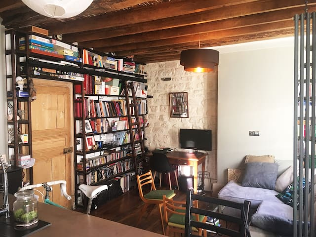 Charming parisian flat in the heart of Montmartre