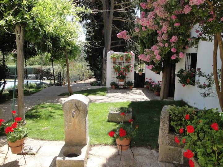 Gran Villa en Torrelaguna a 40 minutos de Madrid!