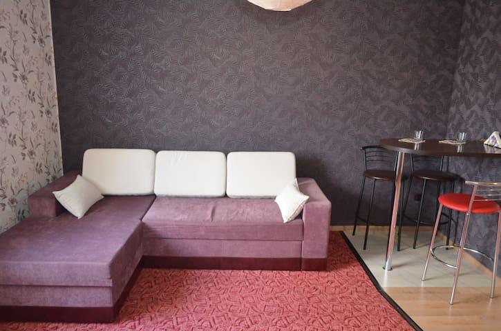 Пентхаус-студия с индивидуальной террасой - Kherson - Apartment