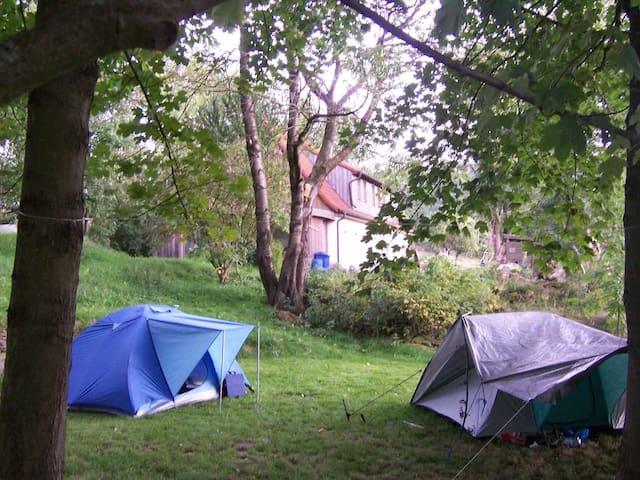 Zelten  bei der Aueralm in der Idylle