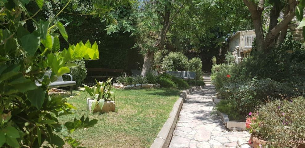 Shared private yard