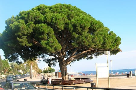 Apartment in residential area close to the beach - Cambrils