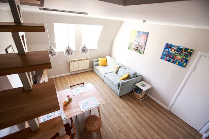 Sunny flat in historical center of Lviv