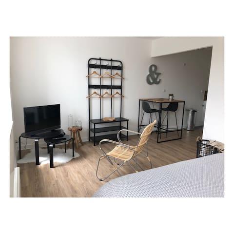 Télévision, fauteuil, armoire et table à manger