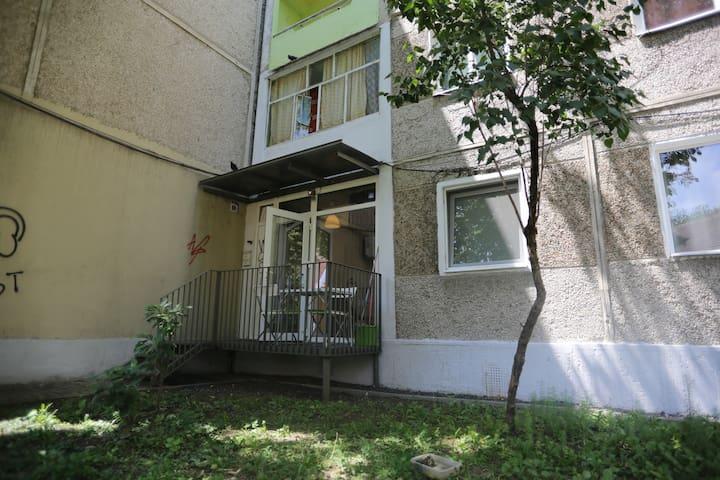 Dacia Apartment / Feel Timisoara like a local!