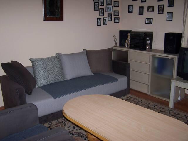 APARTAMENT  W  KALWARII ZEBRZYDOWSKIEJ - Kalwaria Zebrzydowska - Apartamento