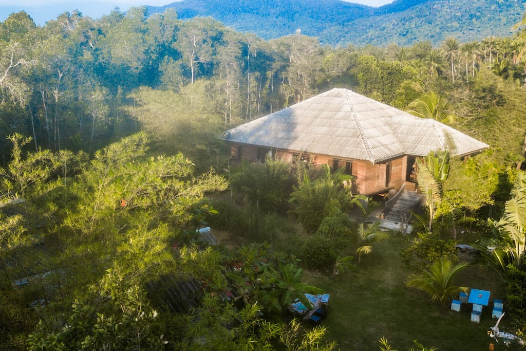 Calmness in the jungle, but close distance to main centre of interest