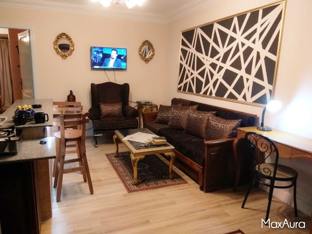 Super Elegant Studio Downtown Cairo for Rent