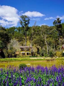 Laan Resort
