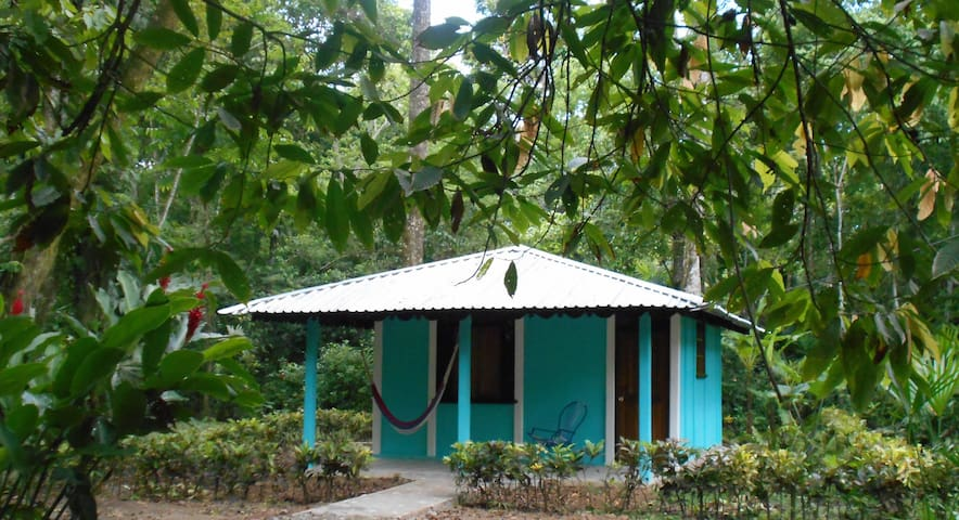 Cabina Clarissa, In the Jungle, near the Sea - Cahuita