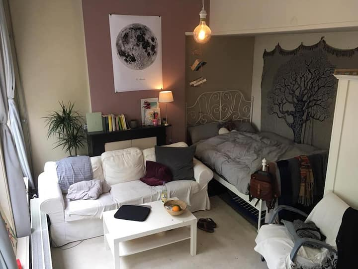 Spacious room in the city + near the park