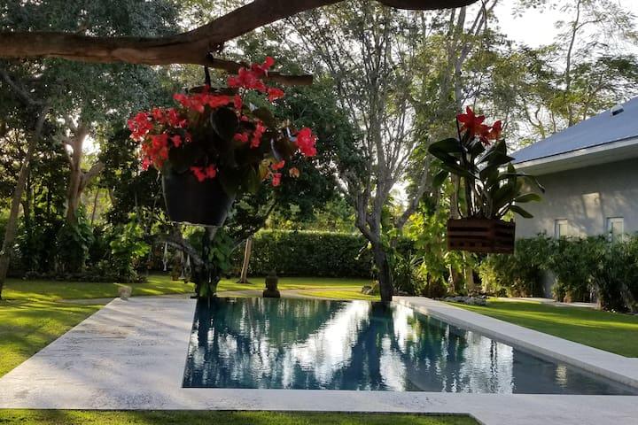 S. Miami Private Bedroom suite w Exquisite Pool