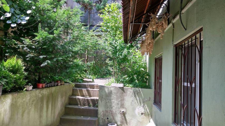 Salome's Homestay in Borjomi - Borjomi - Apartamento