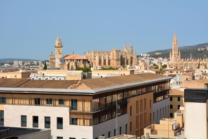 Ático casco antiguo con terraza y vistas, wifi,2AA - Palma - Apartment