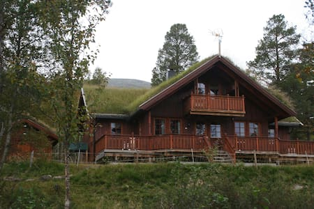 Large cabin by majestetical Kinnpiken, free wifi