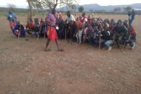 Maasai culture, landscapes, livestock and wildlife