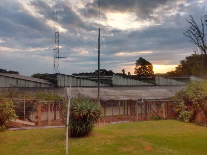 Casa andar inferior Centro Bento Gonçalves