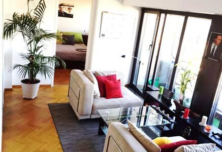Great apartment with balcony, heart of Geneva. - Geneva - Apartment